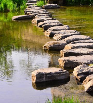 Stepping stones of progress